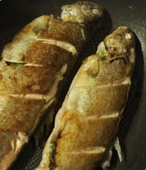 pstrąg sposób na rybę